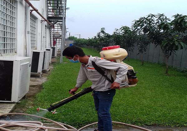Dịch vụ diệt côn trùng Đà Nẵng