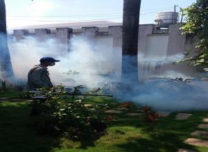 Dịch vụ diệt côn trùng tại Lai Châu