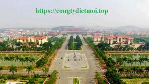 Dịch vụ diệt chuột tốt nhất Bắc Ninh