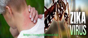 Dịch vụ diệt muỗi tại Đà Nẵng