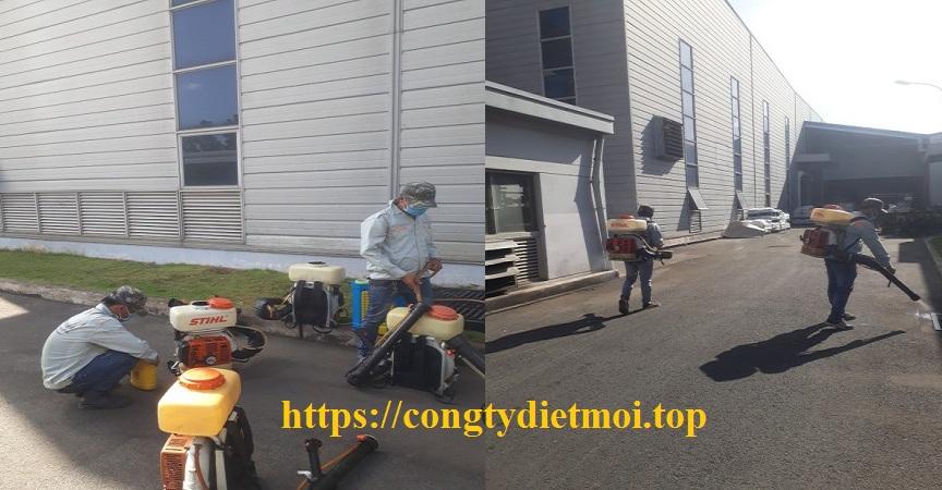 Công ty diệt muỗi hiệu quả Cần Thơ