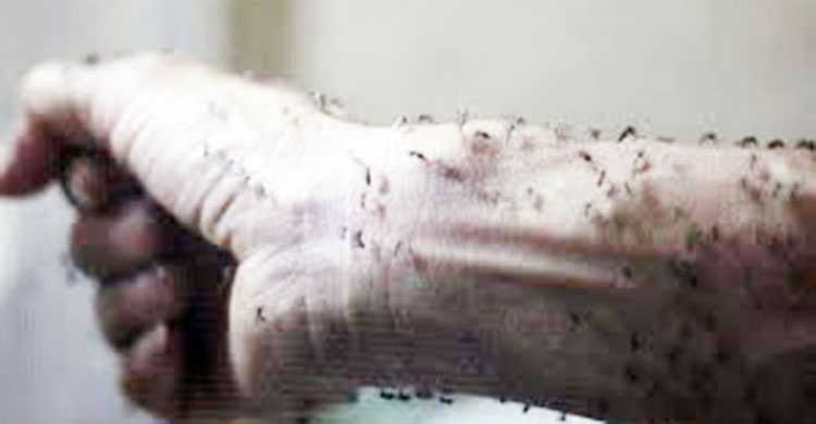 phun thuốc diệt muỗi tại Vĩnh Phúc